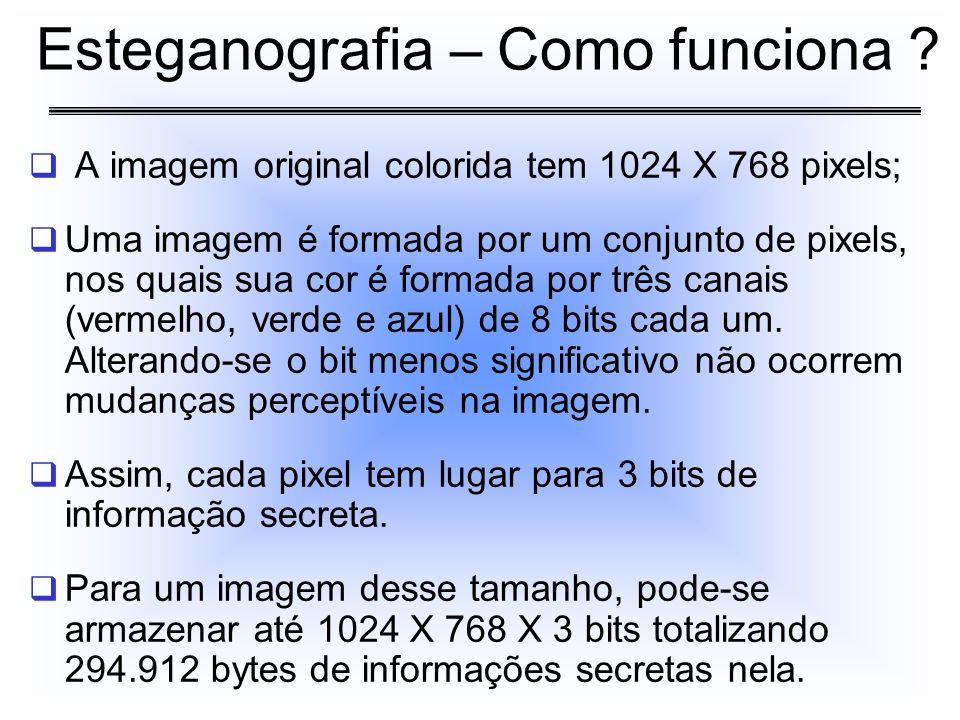 A imagem original colorida tem 1024 X 768 pixels; Uma imagem é formada por um conjunto de pixels, nos quais sua cor é formada por três canais (vermelh