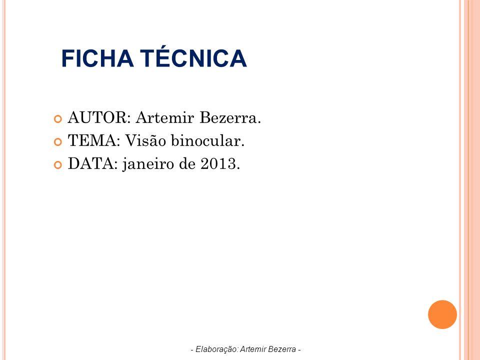 FICHA TÉCNICA AUTOR: Artemir Bezerra.TEMA: Visão binocular.