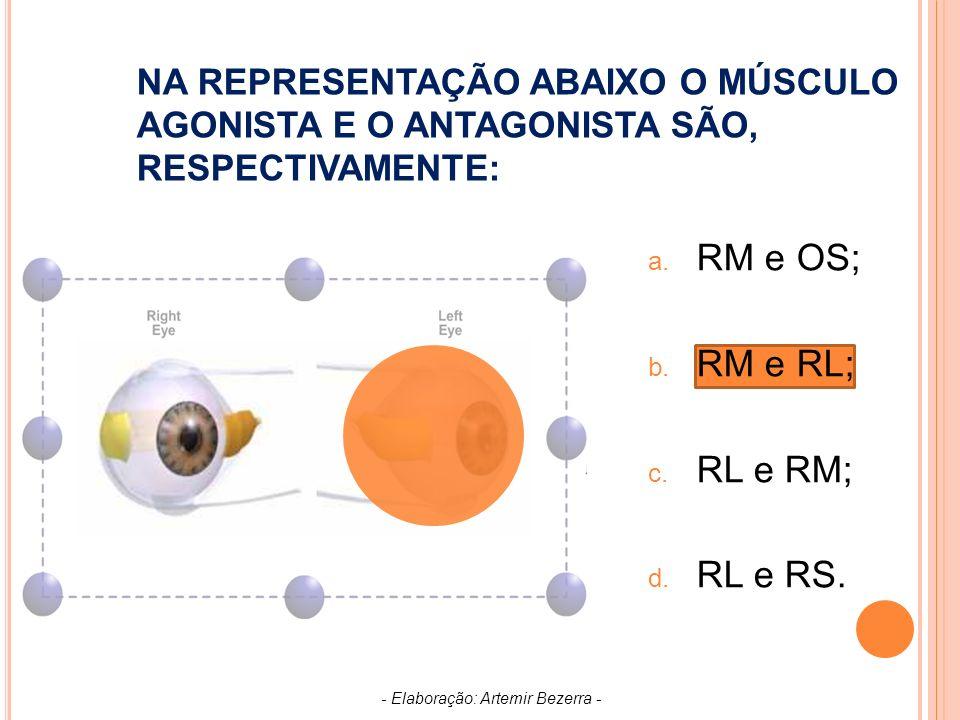 NA REPRESENTAÇÃO ABAIXO O MÚSCULO AGONISTA E O ANTAGONISTA SÃO, RESPECTIVAMENTE: a.