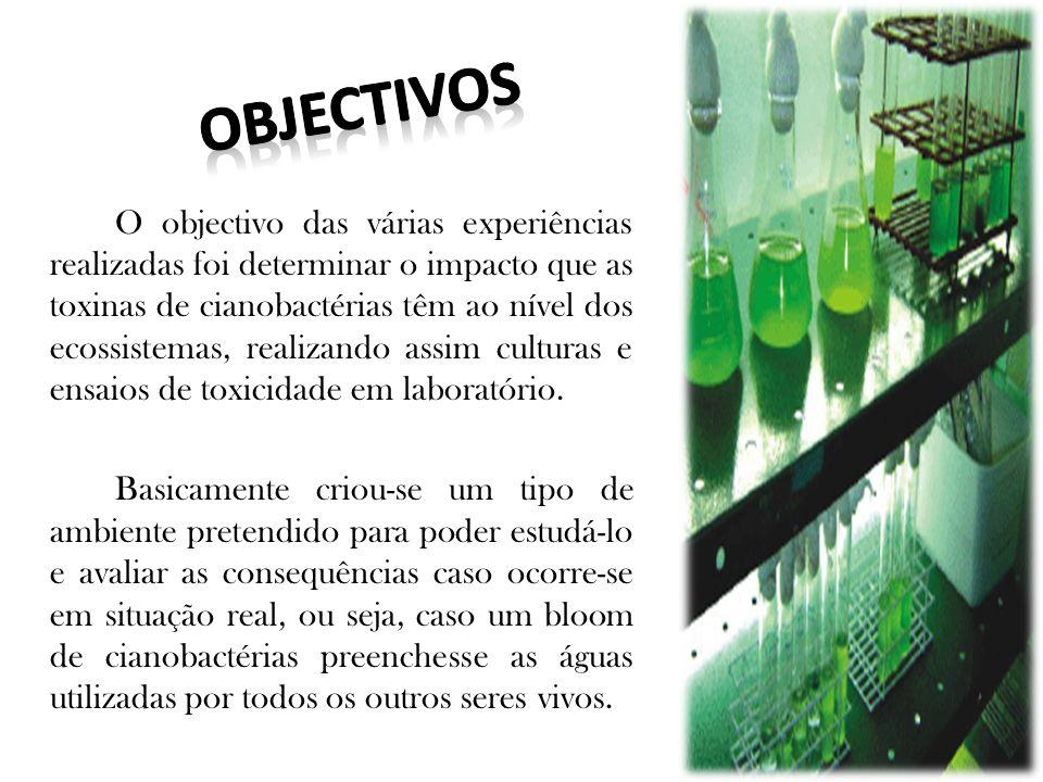 O objectivo das várias experiências realizadas foi determinar o impacto que as toxinas de cianobactérias têm ao nível dos ecossistemas, realizando assim culturas e ensaios de toxicidade em laboratório.