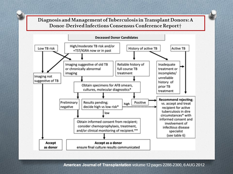 Diagnosis and Management of Tuberculosis in Transplant Donors: A DonorDerived Infections Consensus Conference Report American Journal of Transplantation volume 12 pages 2288-2300, 6 AUG 2012