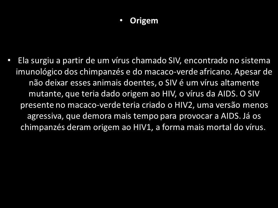 Origem Ela surgiu a partir de um vírus chamado SIV, encontrado no sistema imunológico dos chimpanzés e do macaco-verde africano.