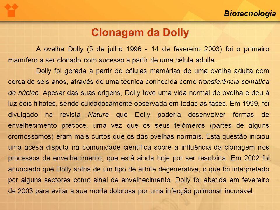 Biotecnologia Clonagem da Dolly A ovelha Dolly (5 de julho 1996 - 14 de fevereiro 2003) foi o primeiro mamífero a ser clonado com sucesso a partir de