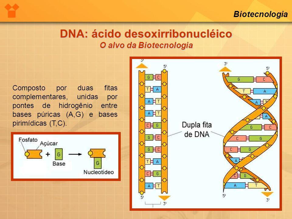 Biotecnologia Composto por duas fitas complementares, unidas por pontes de hidrogênio entre bases púricas (A,G) e bases pirimídicas (T,C). DNA: ácido