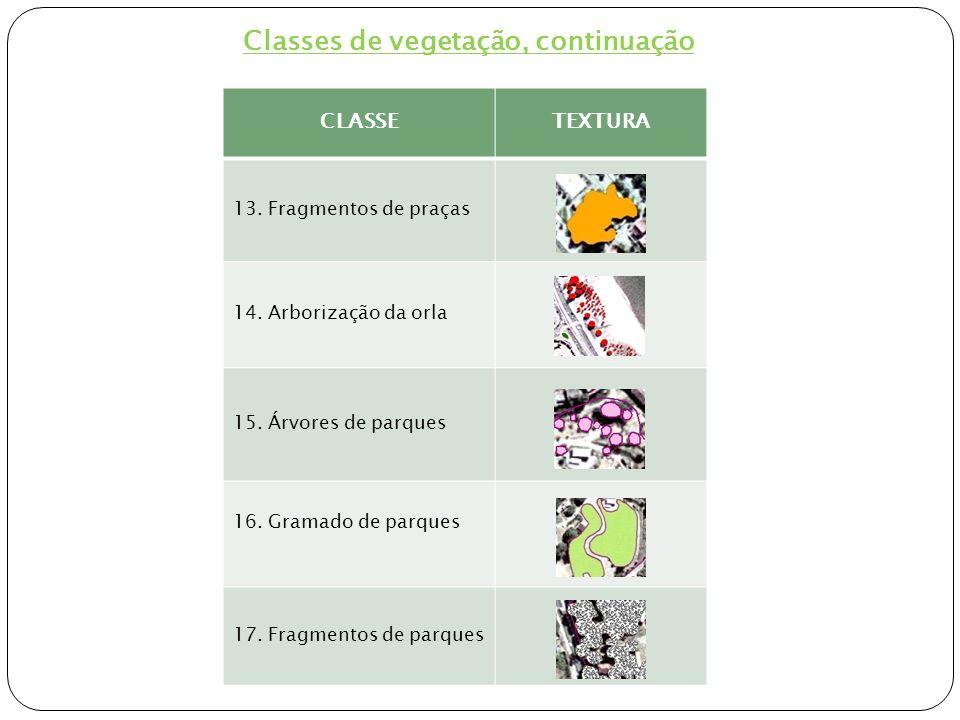 Etapas da metodologia para elaboração do mapa das áreas de vegetação