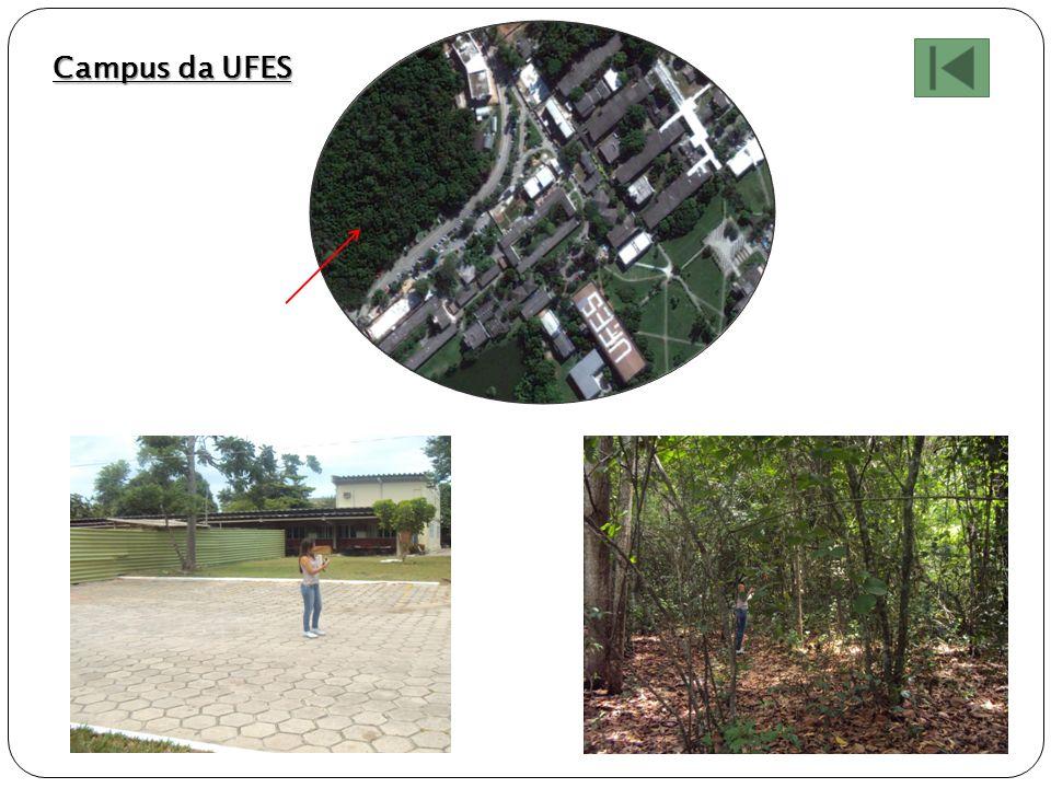 Campus da UFES