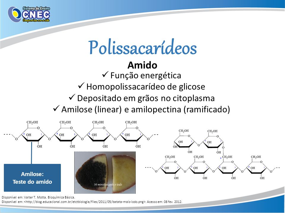 Polissacarídeos Amido Disponível em: Valter T. Motta. Bioquímica Básica. Disponível em:. Acesso em: 08 fev. 2012. Função energética Homopolissacarídeo