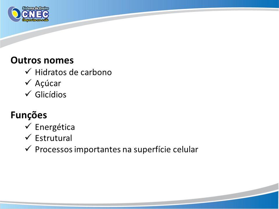 Outros nomes Hidratos de carbono Açúcar Glicídios Funções Energética Estrutural Processos importantes na superfície celular