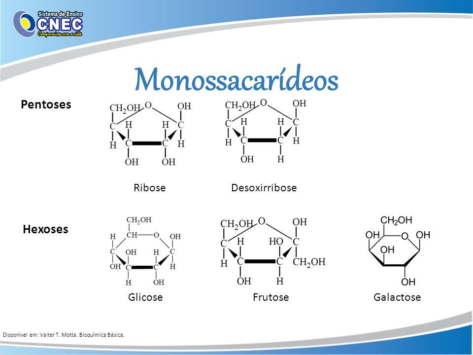 Pentoses Hexoses Galactose Monossacarídeos Glicose Ribose Frutose Desoxirribose Disponível em: Valter T. Motta. Bioquímica Básica.