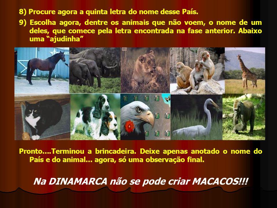 8) Procure agora a quinta letra do nome desse País. 9) Escolha agora, dentre os animais que não voem, o nome de um deles, que comece pela letra encont