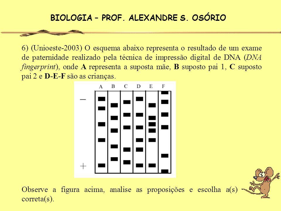 BIOLOGIA – PROF. ALEXANDRE S. OSÓRIO 6) (Unioeste-2003) O esquema abaixo representa o resultado de um exame de paternidade realizado pela técnica de i