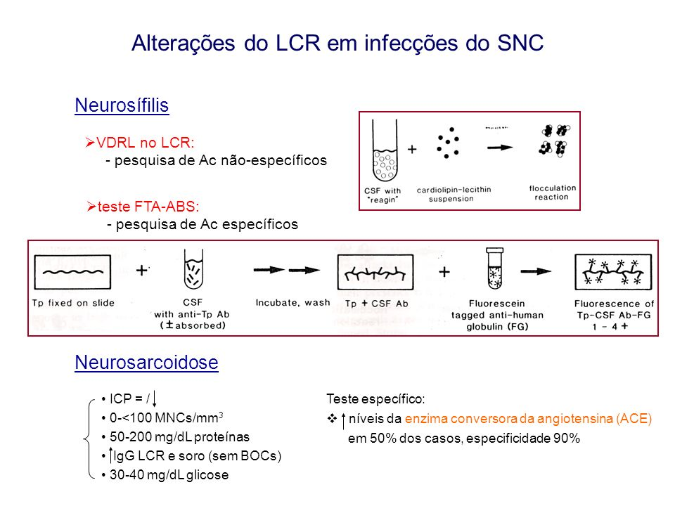 Neurosarcoidose ICP = / 0-<100 MNCs/mm 3 50-200 mg/dL proteínas IgG LCR e soro (sem BOCs) 30-40 mg/dL glicose Teste específico: níveis da enzima conversora da angiotensina (ACE) em 50% dos casos, especificidade 90% Alterações do LCR em infecções do SNC Neurosífilis VDRL no LCR: - pesquisa de Ac não-específicos teste FTA-ABS: - pesquisa de Ac específicos