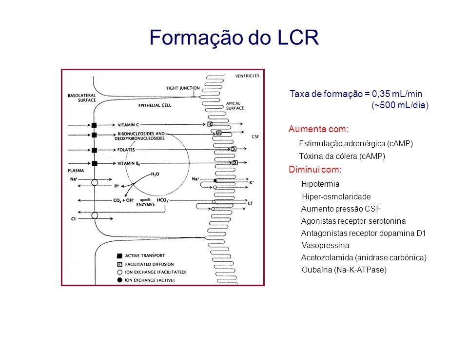 Formação do LCR Taxa de formação = 0,35 mL/min (~500 mL/dia) Aumenta com: Estimulação adrenérgica (cAMP) Tóxina da cólera (cAMP) Diminui com: Hipoterm