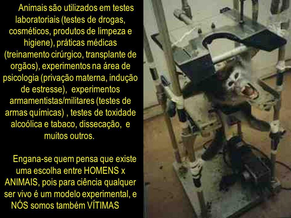Animais são utilizados em testes laboratoriais (testes de drogas, cosméticos, produtos de limpeza e higiene), práticas médicas (treinamento cirúrgico,