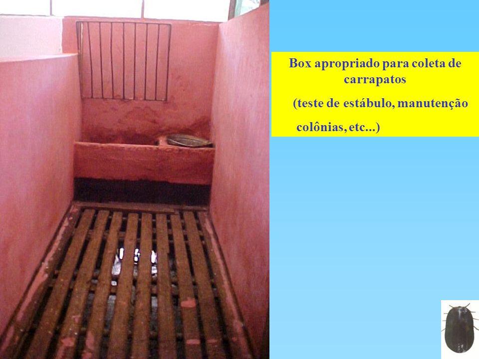 Box apropriado para coleta de carrapatos (teste de estábulo, manutenção colônias, etc...)
