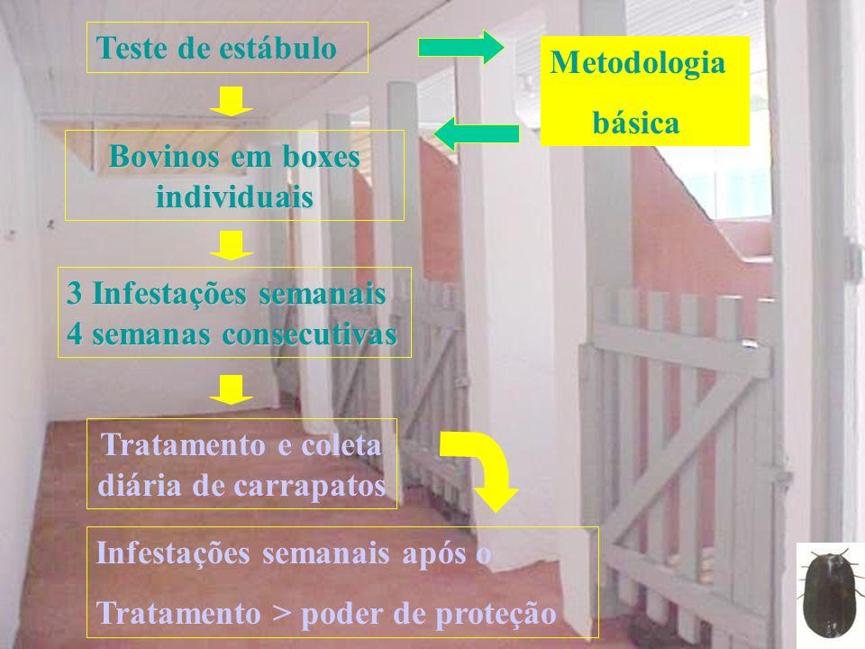 Teste de estábulo Bovinos em boxes individuais 3 Infestações semanais 4 semanas consecutivas Tratamento e coleta diária de carrapatos Metodologia bási