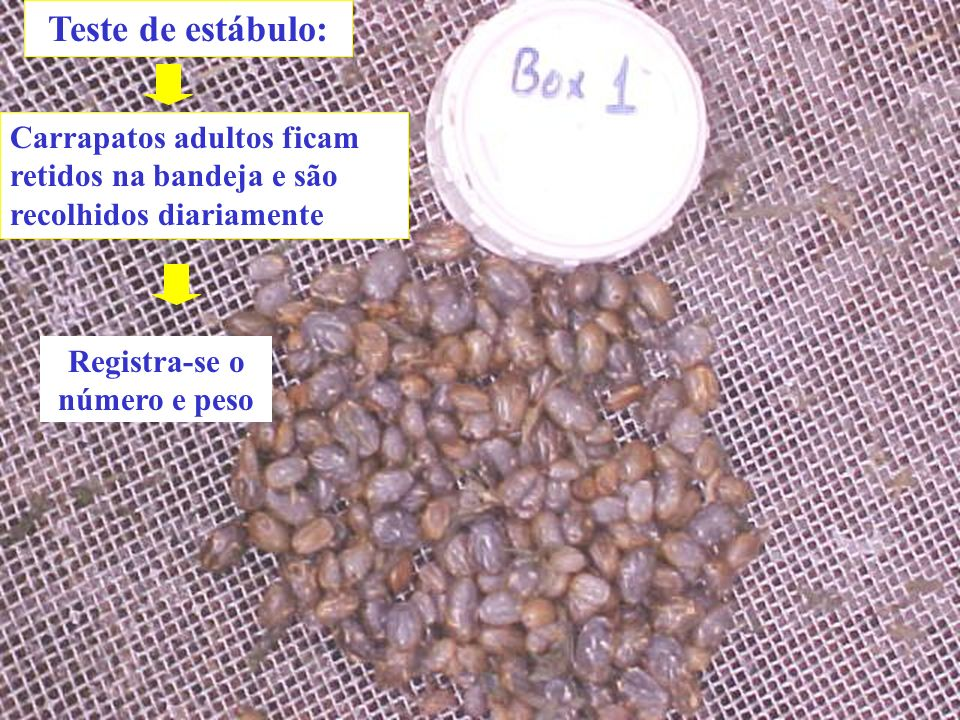 Determinação da viabilidade das teleóginas: % inibição de reprodução: (I.R.Controle – I.R.