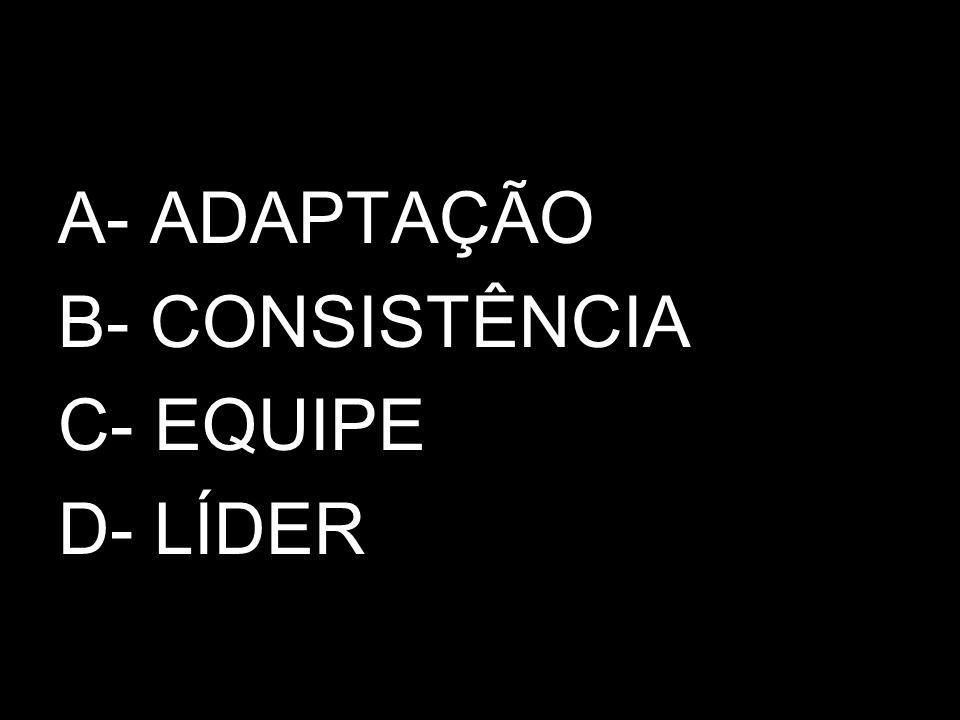 A- ADAPTAÇÃO B- CONSISTÊNCIA C- EQUIPE D- LÍDER