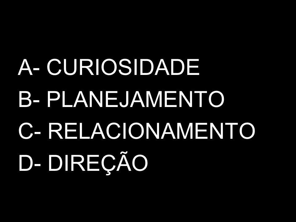 A- CURIOSIDADE B- PLANEJAMENTO C- RELACIONAMENTO D- DIREÇÃO