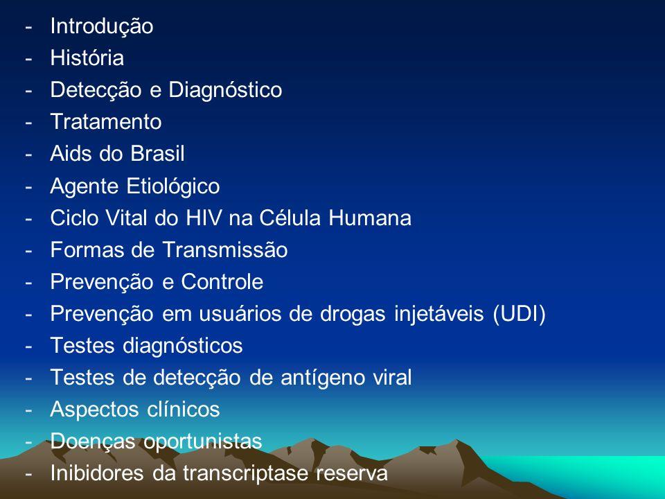- -Introdução - -História - -Detecção e Diagnóstico - -Tratamento - -Aids do Brasil - -Agente Etiológico - -Ciclo Vital do HIV na Célula Humana - -Formas de Transmissão - -Prevenção e Controle - -Prevenção em usuários de drogas injetáveis (UDI) - -Testes diagnósticos - -Testes de detecção de antígeno viral - -Aspectos clínicos - -Doenças oportunistas - -Inibidores da transcriptase reserva
