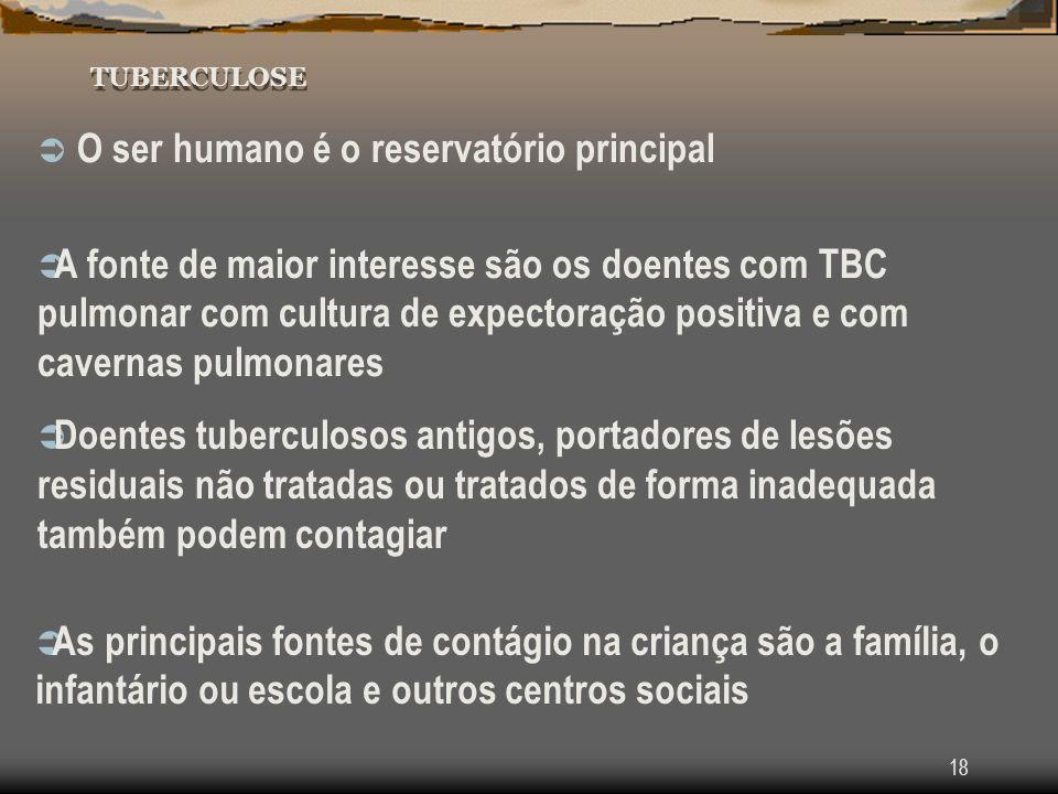 18 TUBERCULOSE O ser humano é o reservatório principal A fonte de maior interesse são os doentes com TBC pulmonar com cultura de expectoração positiva