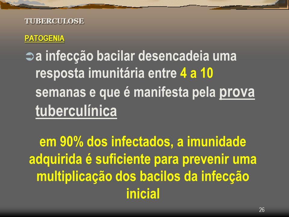 26 TUBERCULOSE PATOGENIA a infecção bacilar desencadeia uma resposta imunitária entre 4 a 10 semanas e que é manifesta pela prova tuberculínica em 90%