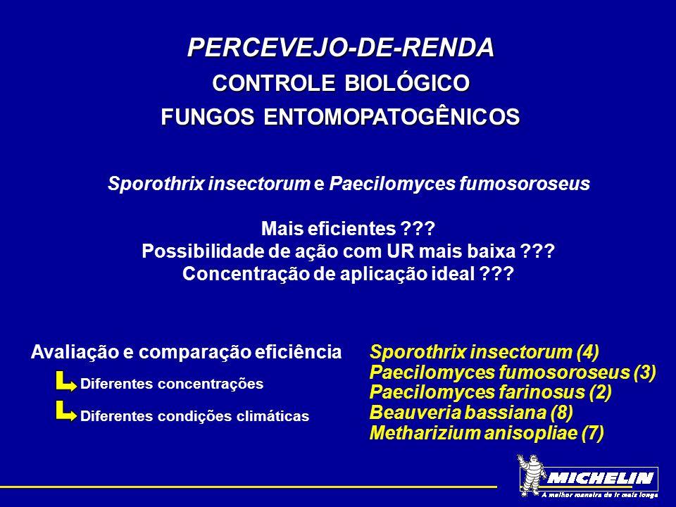 PERCEVEJO-DE-RENDA CONTROLE BIOLÓGICO FUNGOS ENTOMOPATOGÊNICOS Avaliação e comparação eficiência Sporothrix insectorum (4) Paecilomyces fumosoroseus (