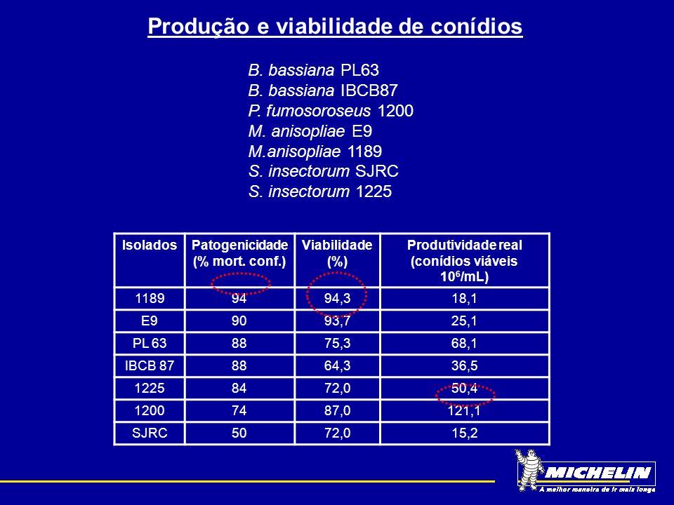 Produção e viabilidade de conídios B. bassiana PL63 B. bassiana IBCB87 P. fumosoroseus 1200 M. anisopliae E9 M.anisopliae 1189 S. insectorum SJRC S. i