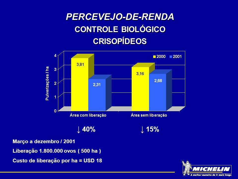 PERCEVEJO-DE-RENDA CONTROLE BIOLÓGICO CRISOPÍDEOS 40% 15% Março a dezembro / 2001 Liberação 1.800.000 ovos ( 500 ha ) Custo de liberação por ha = USD