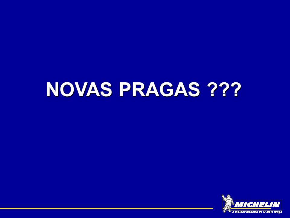 NOVAS PRAGAS ???