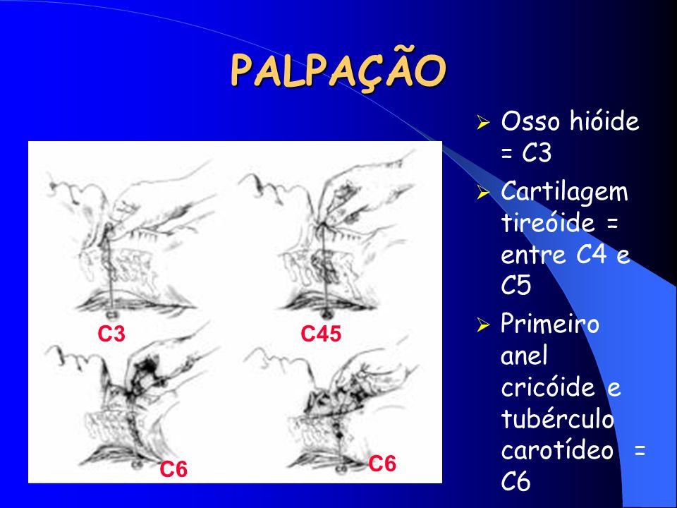 PALPAÇÃO Osso hióide = C3 Cartilagem tireóide = entre C4 e C5 Primeiro anel cricóide e tubérculo carotídeo = C6 C3C45 C6