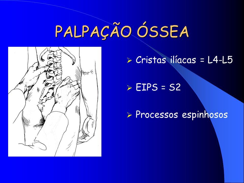 PALPAÇÃO ÓSSEA Cristas ilíacas = L4-L5 EIPS = S2 Processos espinhosos
