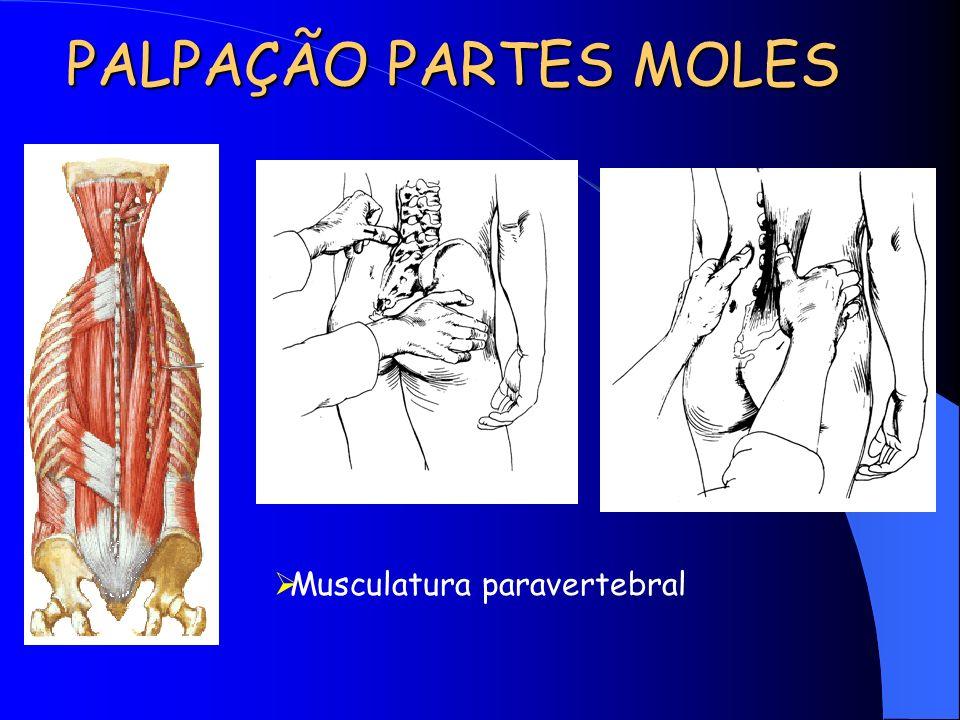 PALPAÇÃO PARTES MOLES Musculatura paravertebral