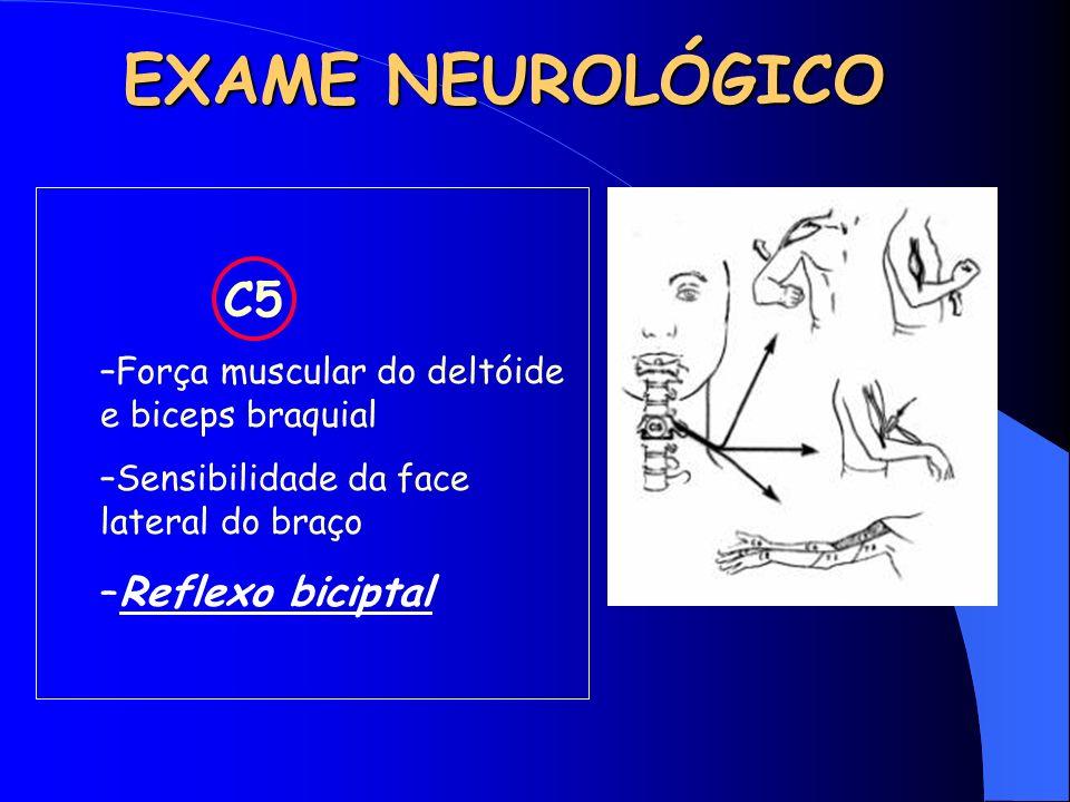 EXAME NEUROLÓGICO C5 –Força muscular do deltóide e biceps braquial –Sensibilidade da face lateral do braço –Reflexo biciptal