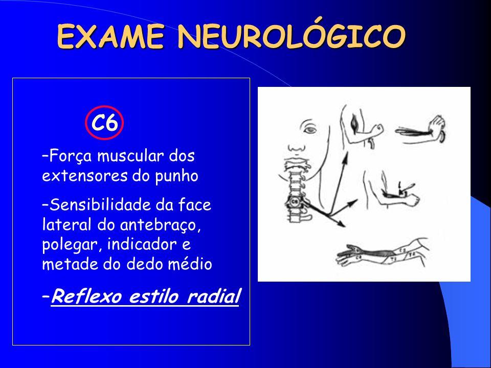 EXAME NEUROLÓGICO C6 –Força muscular dos extensores do punho –Sensibilidade da face lateral do antebraço, polegar, indicador e metade do dedo médio –R