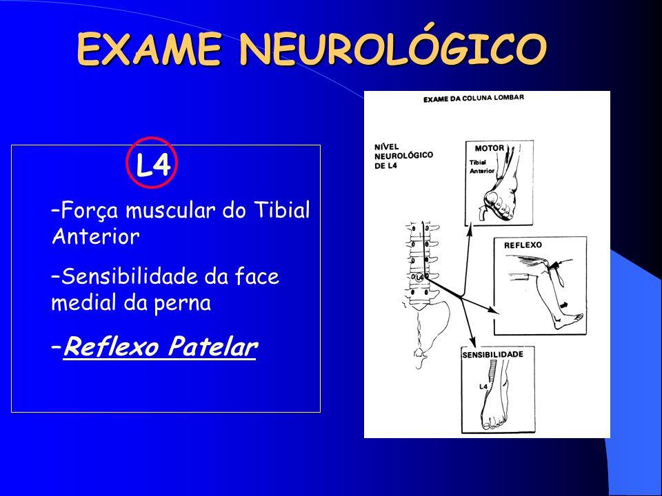 EXAME NEUROLÓGICO L4 –Força muscular do Tibial Anterior –Sensibilidade da face medial da perna –Reflexo Patelar