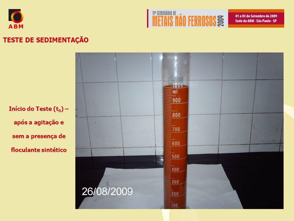 TESTE DE SEDIMENTAÇÃO Início do Teste (t 0 ) – após a agitação e sem a presença de floculante sintético