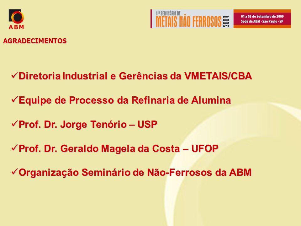 AGRADECIMENTOS Diretoria Industrial e Gerências da VMETAIS/CBA Diretoria Industrial e Gerências da VMETAIS/CBA Equipe de Processo da Refinaria de Alum