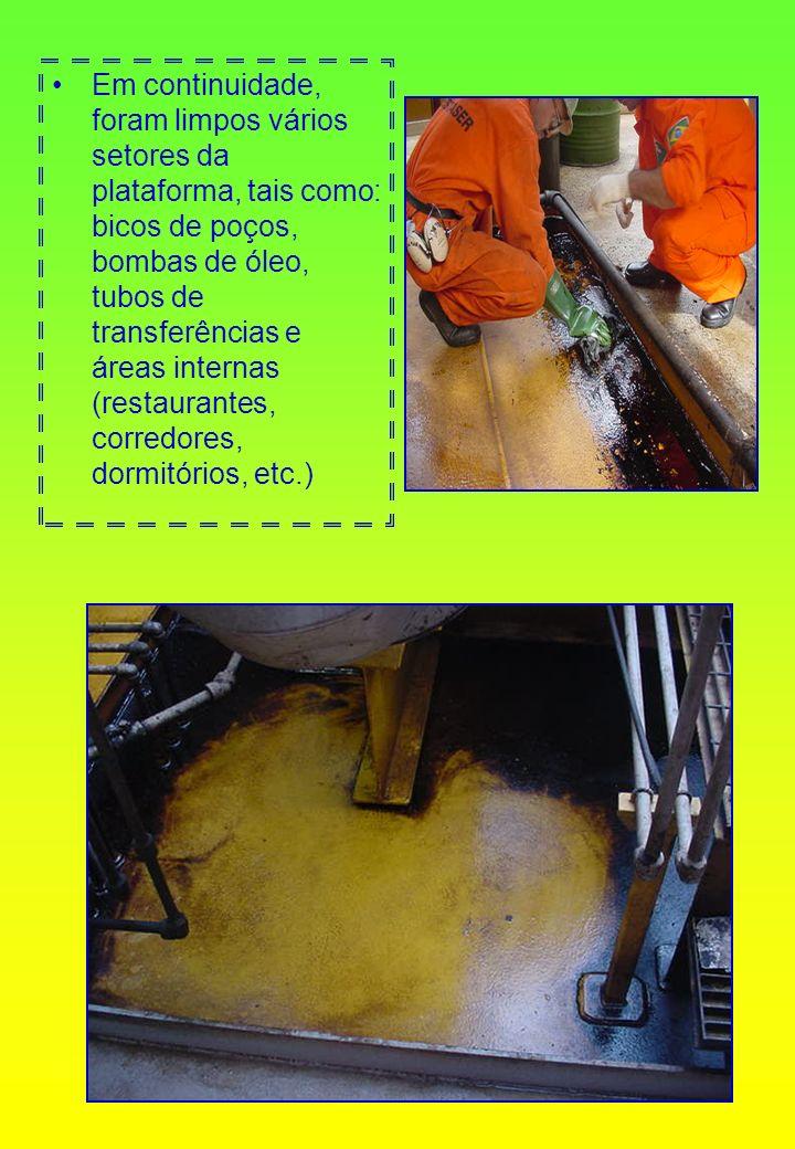 Em continuidade, foram limpos vários setores da plataforma, tais como: bicos de poços, bombas de óleo, tubos de transferências e áreas internas (resta