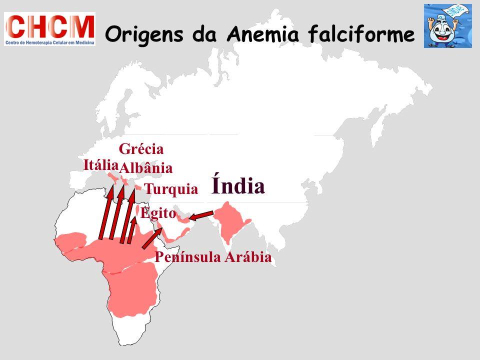 Índia Itália Grécia Albânia Turquia Península Arábia Origens da Anemia falciforme Egito