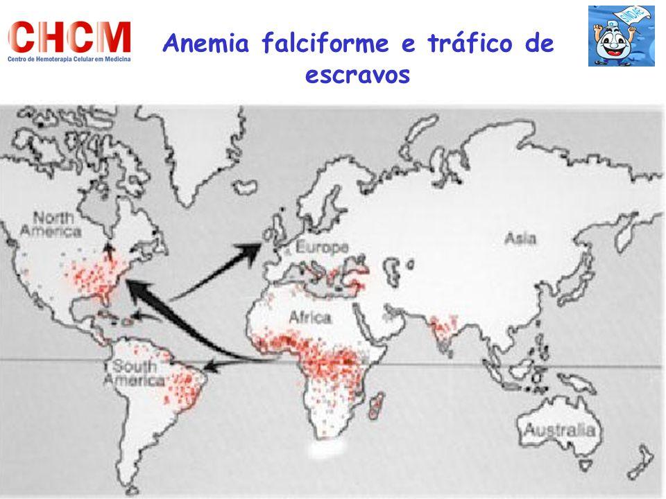Anemia falciforme e tráfico de escravos