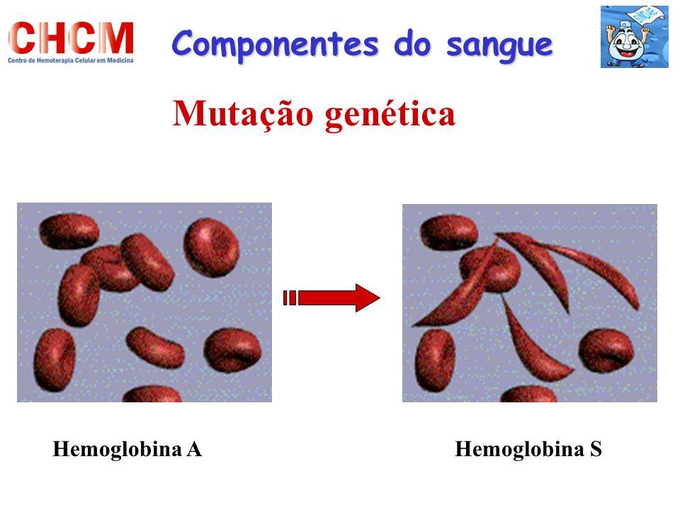 Componentes do sangue Mutação genética Hemoglobina AHemoglobina S
