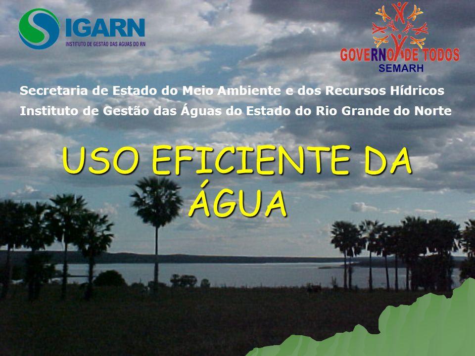 USO EFICIENTE DA ÁGUA Secretaria de Estado do Meio Ambiente e dos Recursos HídricosInstituto de Gestão das Águas do Estado do Rio Grande do Norte