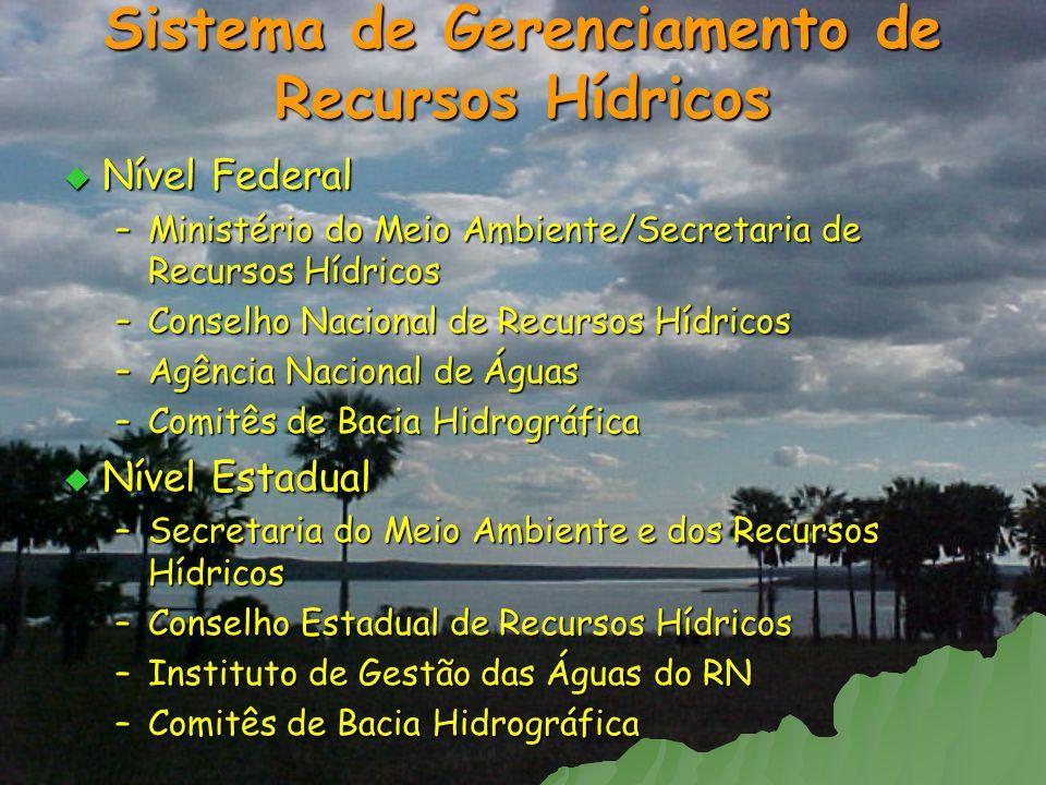 Nível Federal Nível Federal –Ministério do Meio Ambiente/Secretaria de Recursos Hídricos –Conselho Nacional de Recursos Hídricos –Agência Nacional de