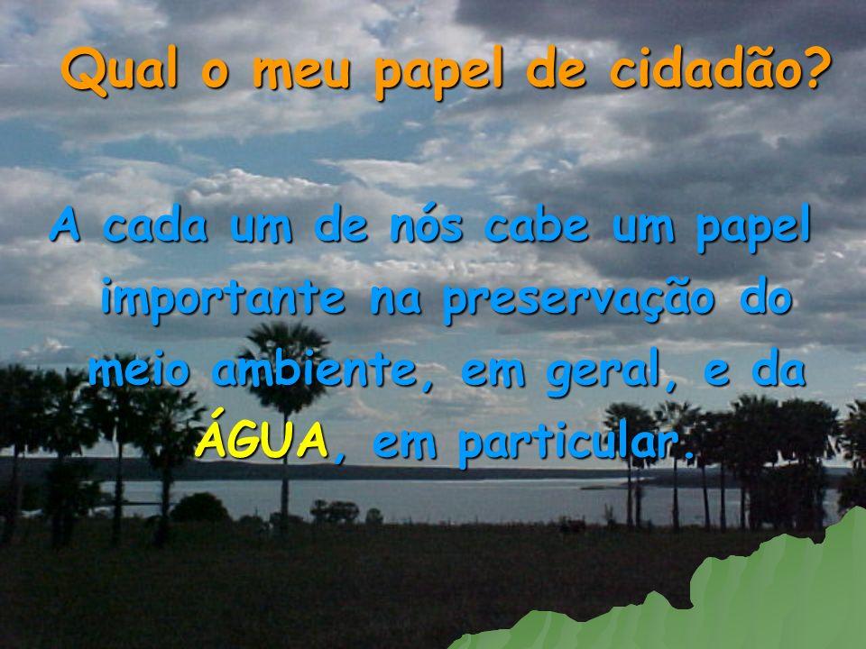 Qual o meu papel de cidadão? A cada um de nós cabe um papel importante na preservação do meio ambiente, em geral, e da ÁGUA, em particular.