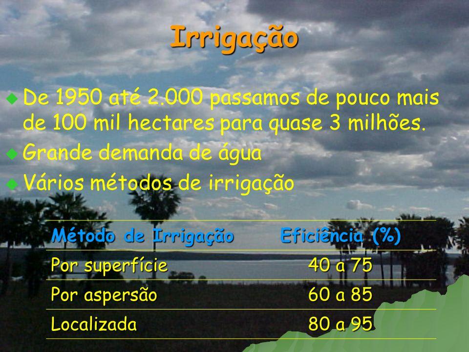 Irrigação De 1950 até 2.000 passamos de pouco mais de 100 mil hectares para quase 3 milhões. Grande demanda de água Vários métodos de irrigação Método