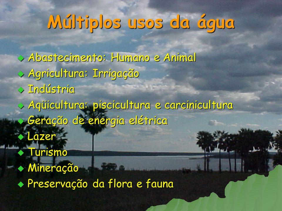 Múltiplos usos da água Abastecimento: Humano e Animal Abastecimento: Humano e Animal Agricultura: Irrigação Agricultura: Irrigação Indústria Indústria
