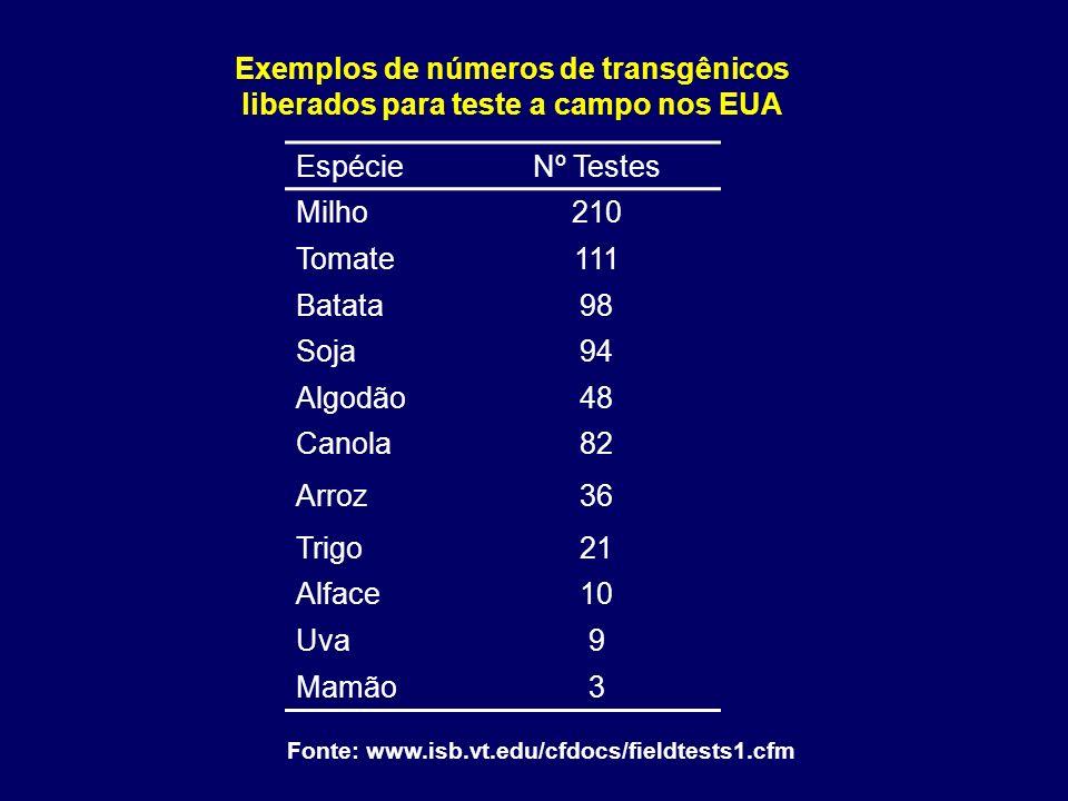 Exemplos de números de transgênicos liberados para teste a campo nos EUA Fonte: www.isb.vt.edu/cfdocs/fieldtests1.cfm EspécieNº Testes Milho210 Tomate