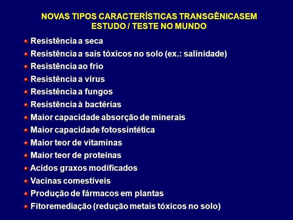 NOVAS TIPOS CARACTERÍSTICAS TRANSGÊNICASEM ESTUDO / TESTE NO MUNDO Resistência a seca Resistência a sais tóxicos no solo (ex.: salinidade) Resistência