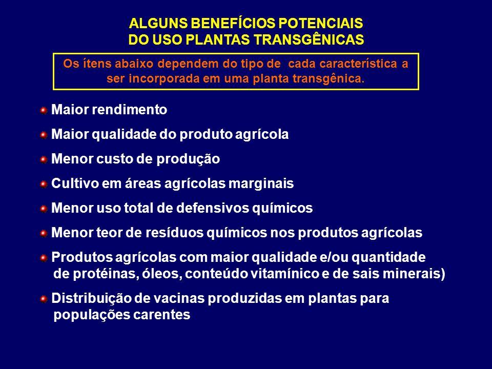 ALGUNS BENEFÍCIOS POTENCIAIS DO USO PLANTAS TRANSGÊNICAS Maior rendimento Maior qualidade do produto agrícola Menor custo de produção Cultivo em áreas